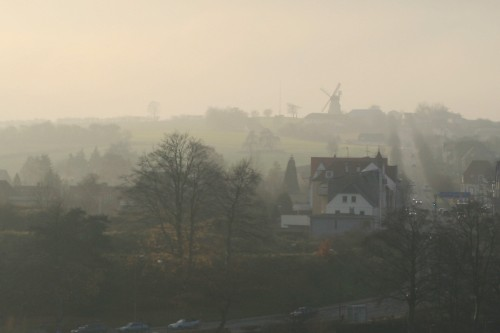 Dybbol molle in the fog